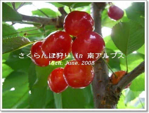 20080615_1.jpg