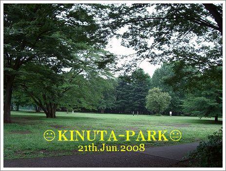 20080622_5.jpg