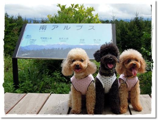 5・2011・9・17・駒ケ岳SA1