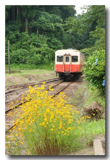 電車②.jpg