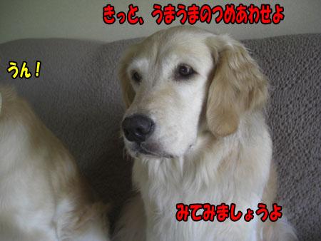 0806102322