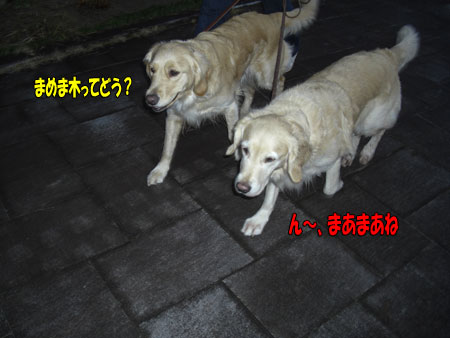 0802130821