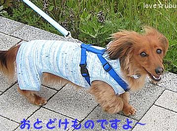 Happy☆①
