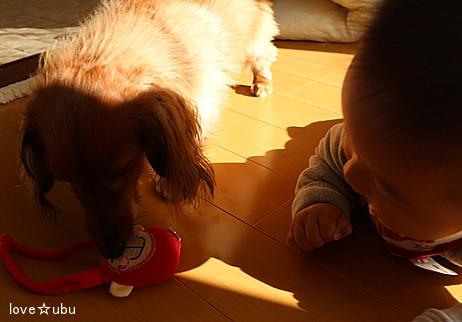 おもちゃが…①