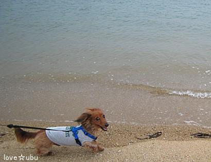 海散歩♪①