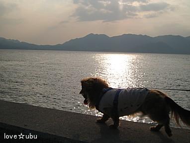 海散歩♪②