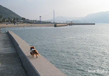 海散歩♪③