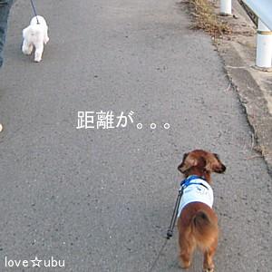 散歩 with ミルク①