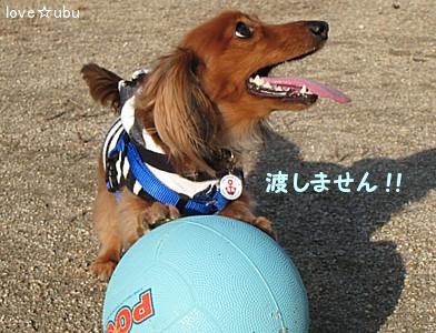 プーさんボール②