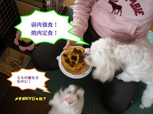 三度の飯よりご飯が好き!!!