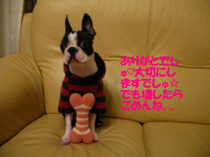 IMG_0984_1_1.jpg