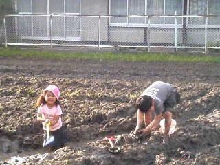 隣の田んぼで。おおはしゃぎ!泥だらけ!