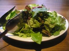 リネアプリュス サラダ