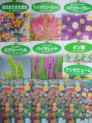 花の種 いろいろ