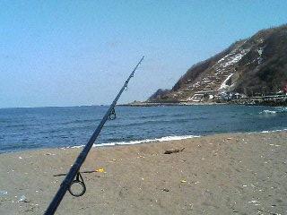 美国の海岸