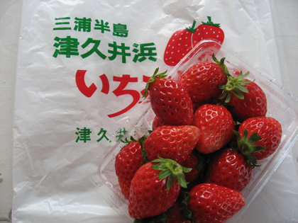 イチゴ11