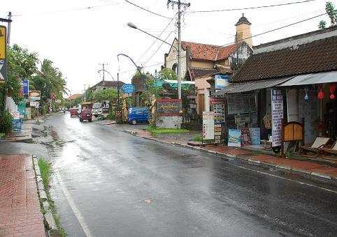 20090124m-2.jpg