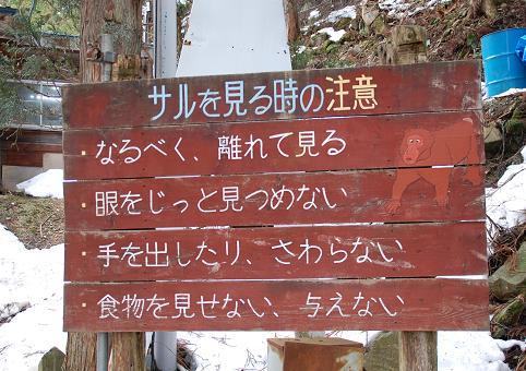 20090215-8.jpg