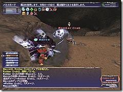 20070611_7