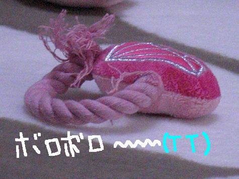 pink 021