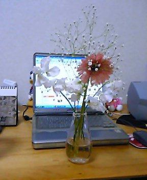 20050129144849.jpg