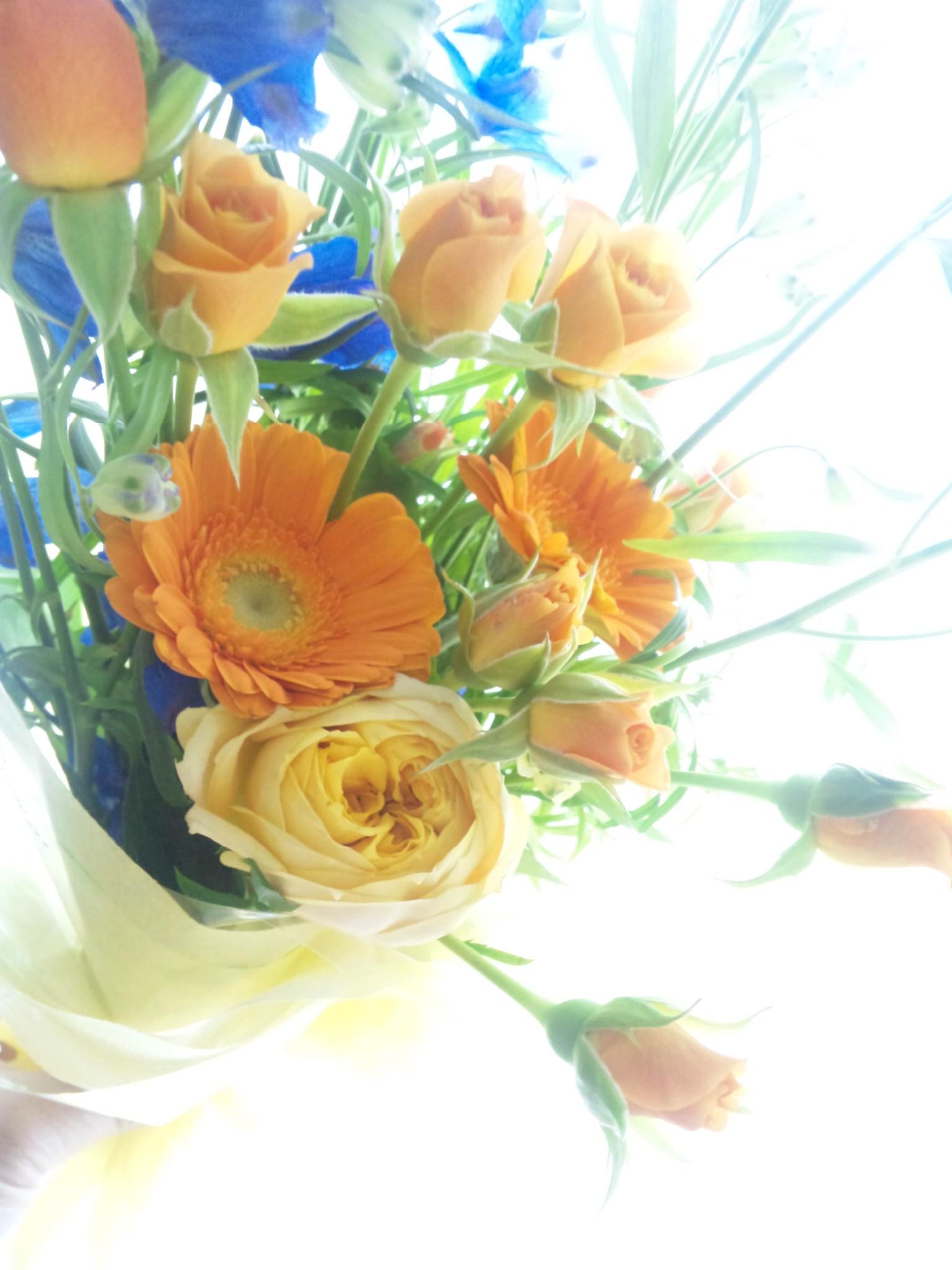 任期満了の花