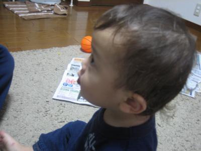 IMG_2832_convert_20090613220104.jpg