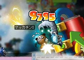 Maple6842a.jpg