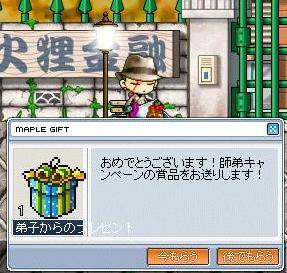 Maple6901a.jpg