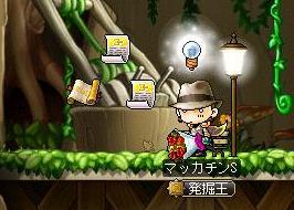 Maple9506a.jpg