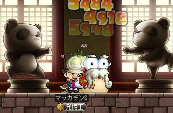 Maple9509a.jpg