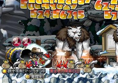 Maple9513a.jpg
