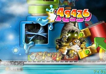 Maple9515a.jpg