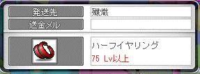Maple9536a.jpg