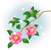 pink02_convert_20111116142724.jpg