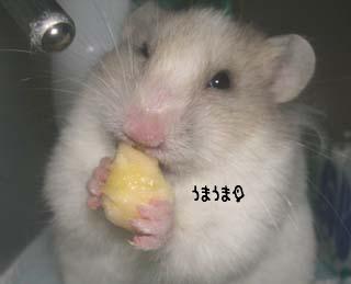 200604082016.jpg