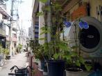 中崎町の夏休み_3