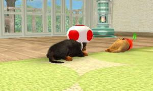 dogs0460.jpg