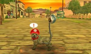 dogs0463.jpg
