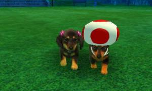 dogs0467.jpg