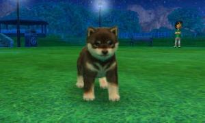 dogs0472.jpg