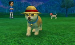 dogs0478.jpg