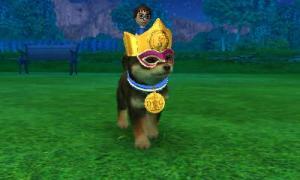 dogs0481.jpg