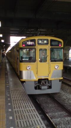DSC01409.jpg