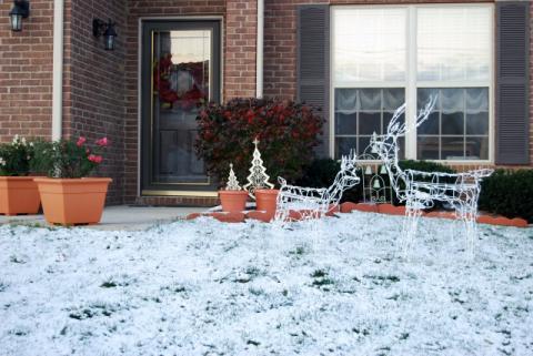 2008年11月21日 雪