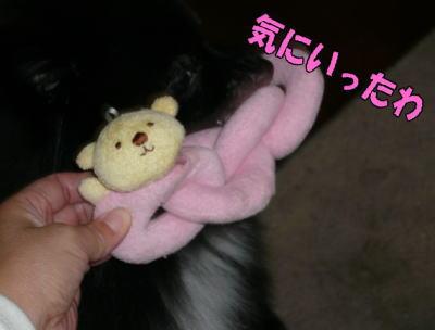 090130rinchan2