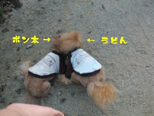 DSCF1242_convert_20091117185755.jpg