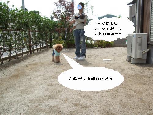 DSCF9344_convert_20090617232956.jpg