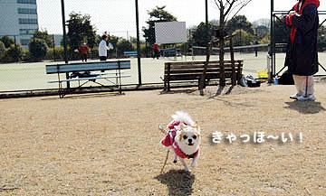 08marine0309_2a.jp4