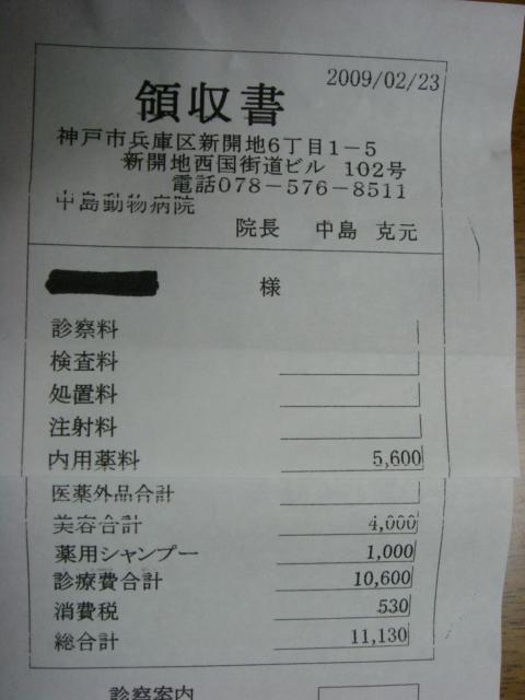 015_20090225002042.jpg